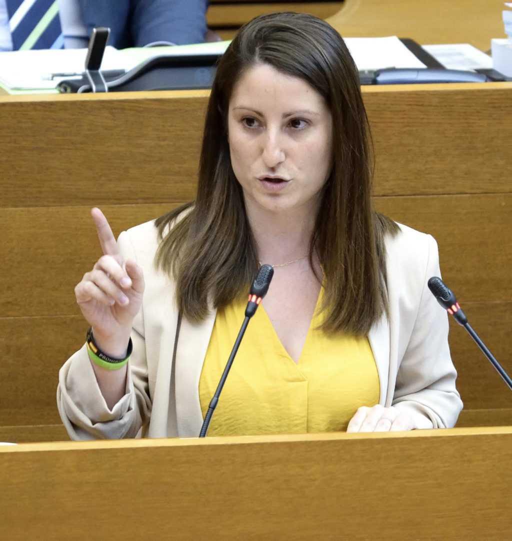 VOX acudirá a los tribunales si se vota el jueves la Ley del Juego de forma ilegal