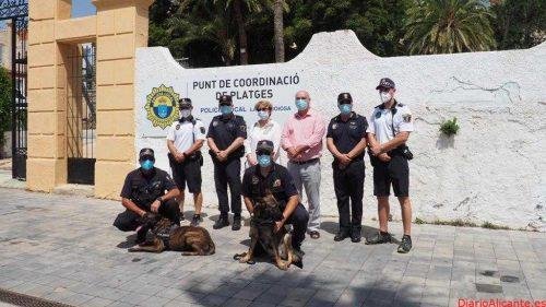 19 auxiliares de playas contratados por la Generalitat velan por la seguridad en las playas de la Vila Joiosa