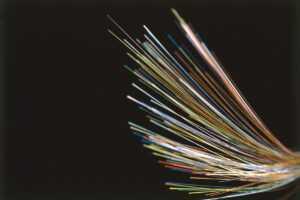 Telefónica conecta con fibra óptica 9.778 hogares y comercios de Torrevieja