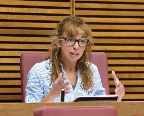 VOX presenta una iniciativa para proteger y ayudar a las adolescentes embarazadas de la Comunidad Valenciana