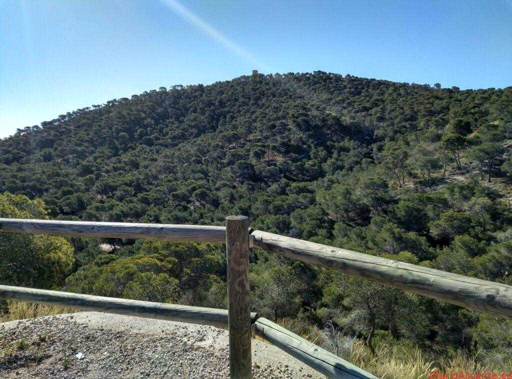 Medio Ambiente de la Vila lleva a cabo la adecuación de masas forestales en la pinada de la Cala
