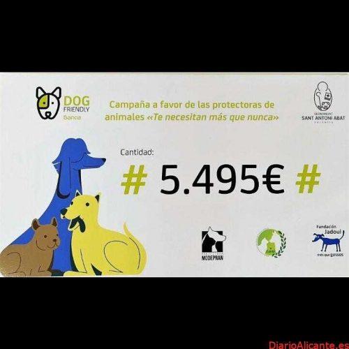 SOLIDARIDAD Bankia y la Hermandad de San Antonio Abad entregan 5.500 euros a tres protectoras de Valencia