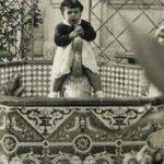La fuente y el cenador del jardín histórico del chalet Centella vuelven a la vida