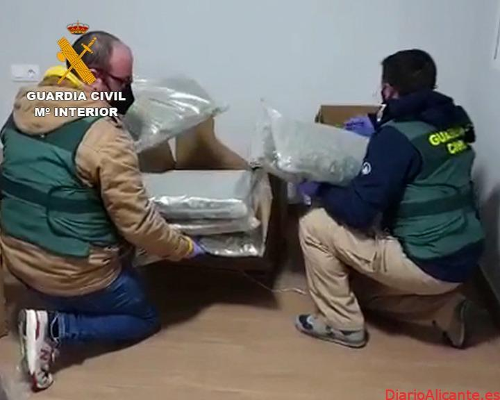 La Guardia Civil detiene a 64 personas pertenecientes a una organización criminal que distribuía grandes cantidades de marihuana por Europa