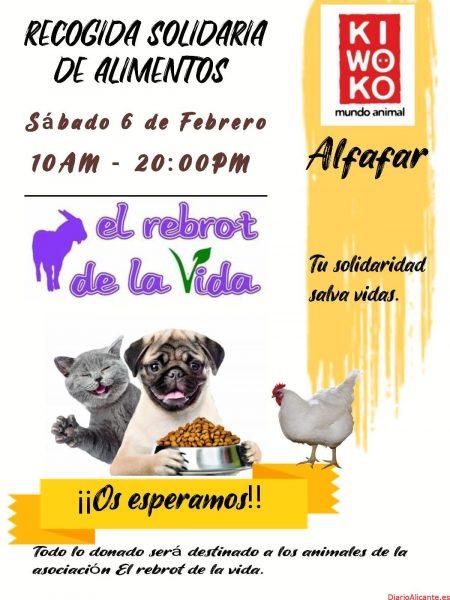 RECOGIDA SOLIDARIA PARA LOS ANIMALES DEL REBROT DE LA VIDA