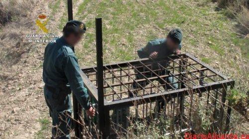 La Guardia Civil detiene y/o investiga a más de 300 personas por delitos contra la biodiversidad