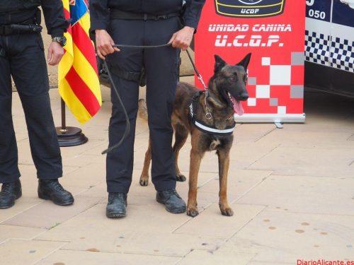 La Policía Local de la Vila hace entrega de un agente canino a la guardia urbana de Tarragona