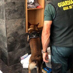 La directora general de la Guardia Civil presenta la operación Lodos donde se ha desmantelado seis grupos criminales dedicados al blanqueo de capitales procedentes del narcotráfico
