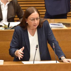 Massó (VOX) insta al conseller de Economía a eliminar el despilfarrodel Botánico con 20 millones en asesores y exige que baje impuestos y ayude a los valencianos