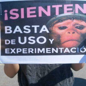Protestas por el caso de maltrato animal de vivotecnia
