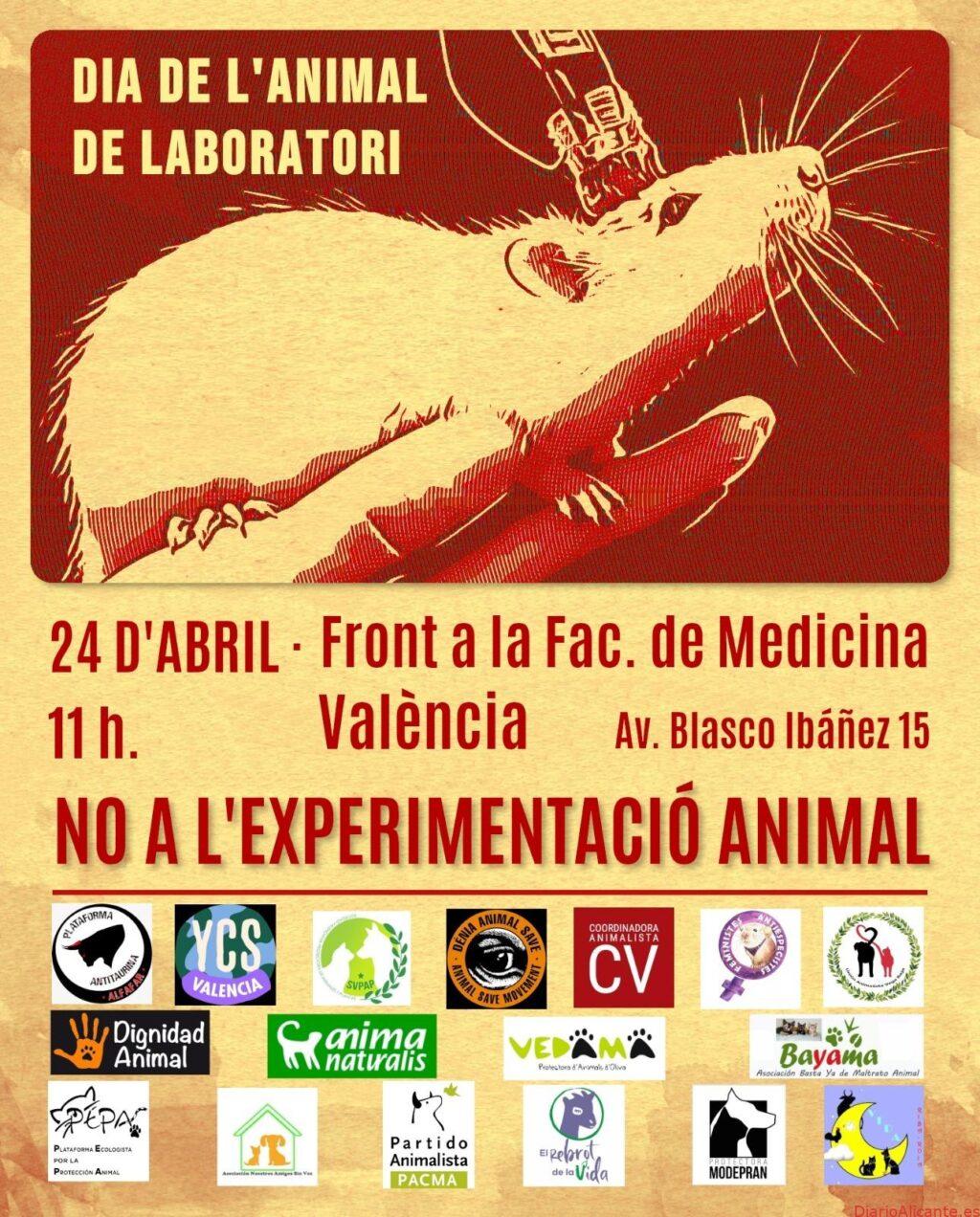 VALENCIA SALE A LA CALLE CONTRA LA EXPERIMENTACIÓN ANIMAL