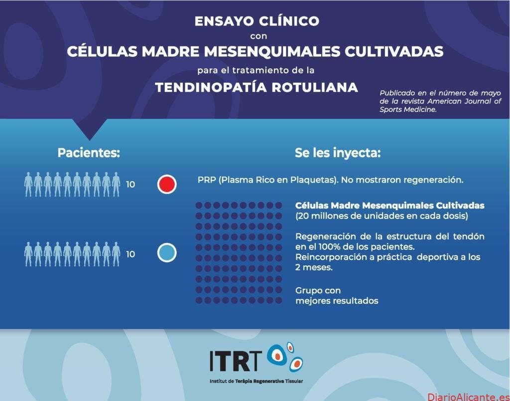 ITRTdemuestra por primera vez en el mundo que se puede regenerar tendón con células madre mesenquimales cultivadas