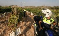 La escasez de agentes de policía en Monforte del Cid se ha convertido en un riesgo para la seguridad