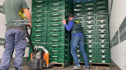 11 detenidos en Málaga por transportar en camiones droga oculta entre toneladas